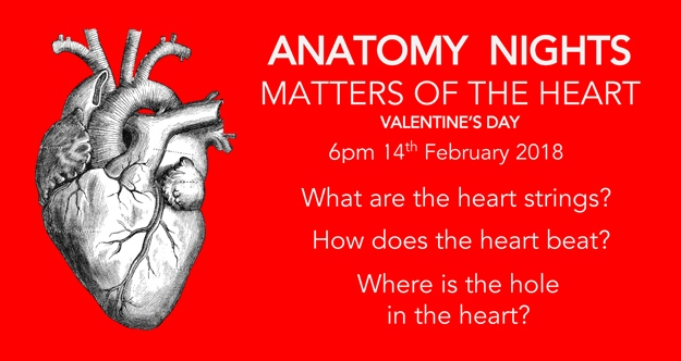 Anatomy Nights Matters Of The Heart Ascus