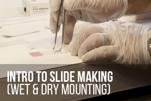 Intro to Slide Making (Wet & Dry Mounting) @ ASCUS Lab | Scotland | United Kingdom